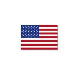 Steag S.U.A.